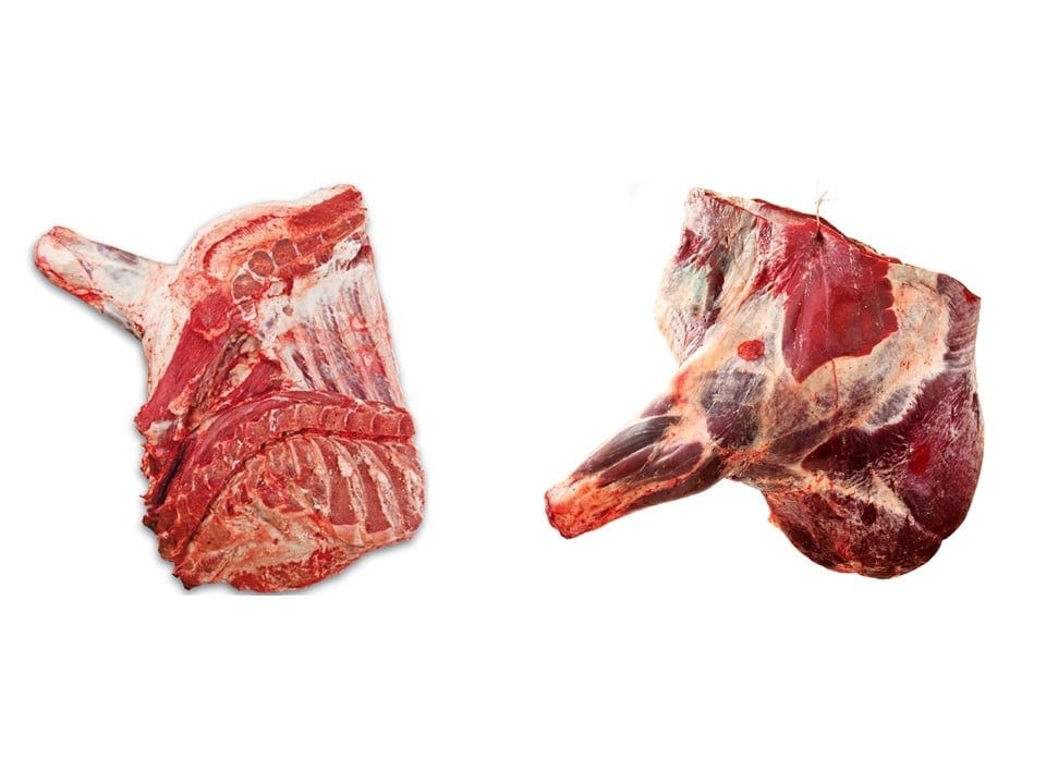 Beef forequarter