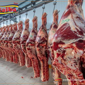 UAE Fresh Meat imports UAE meat Importers, Wholesalers, suppliers